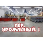 Открытие магазина Светофор в Могилеве